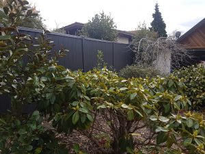 boundary fencing by Wanaka fencing