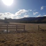 Post and Rail and Farm Fencing